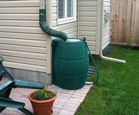 Set Up a Rain Barrel to Save Money and Water