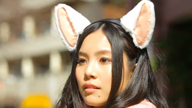 Cat Ears Pick Up on Brainwaves and Act as Furry Mood Rings For Those Around You