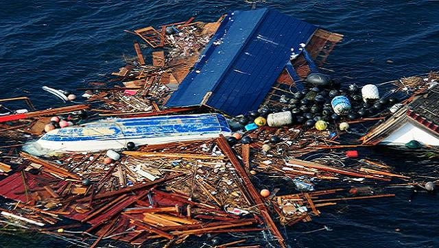"A ""research cruise"" could recruit tourists to study tsunami debris"