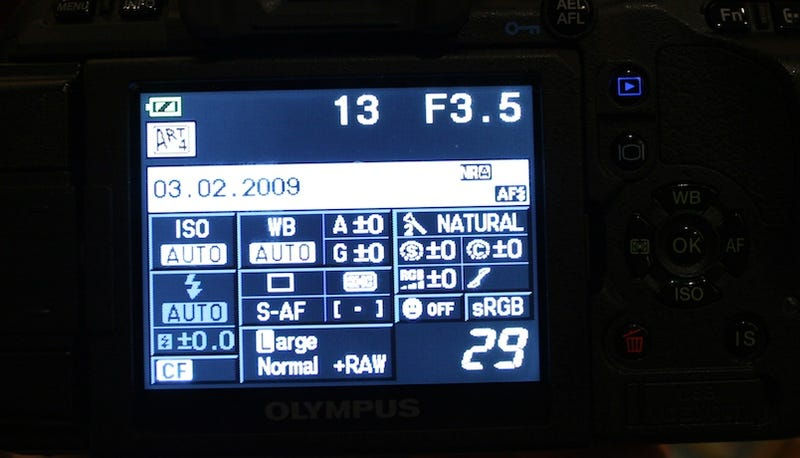 Every DSLR Should Have a Swivel Screen Like Olympus E-620