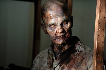The Walking Dead - Images