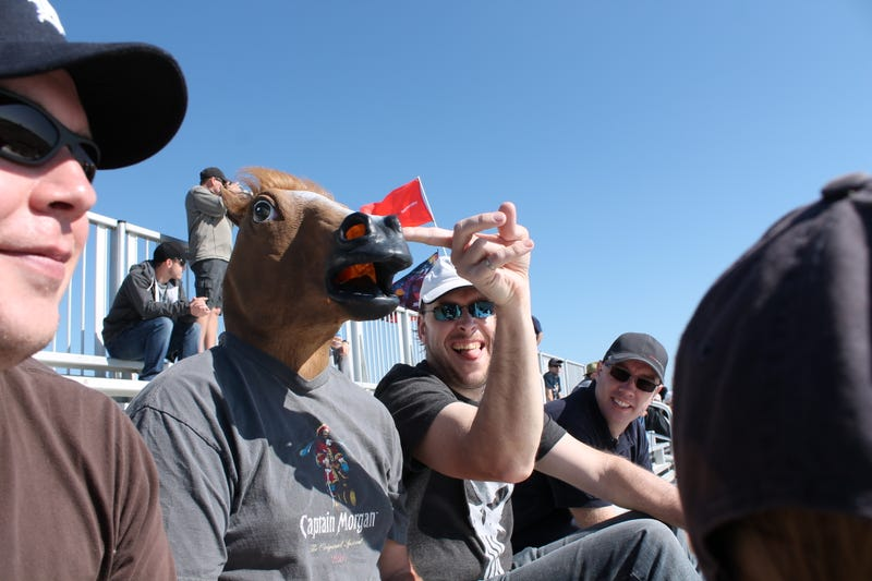 Formula 1 Is More Fun In A Horse Mask