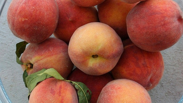 Use Peach and Nectarine Pits for Infused Syrups and Vinegars