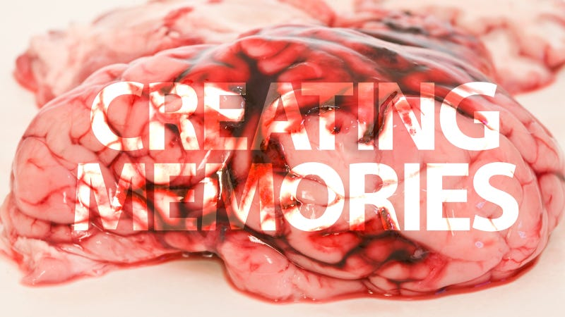 Scientists Invent Method to Create Memories in Brains