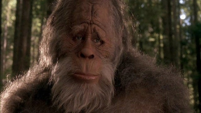 It's officially legal to kill Bigfoot in Texas