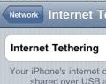 Internet Tethering Already Working on iPhone 3.0