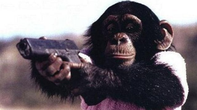 Chimp Cops Were the First Cops