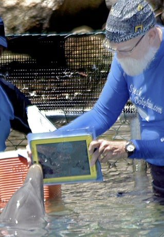 Communicating with Dolphins via the iPad, Sort Of