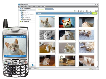Download of the Day: Sync your photos with SharpCast