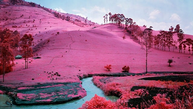 Infrared Film Can Make Even a Warzone Look Beautiful