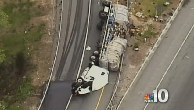 20 Million Bees Swarm Delaware Highway After Tractor-Trailer Crash