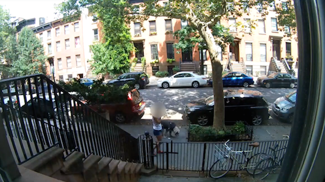 Brooklynites Catch Renegade Dog Poop With Hidden Camera Campaign