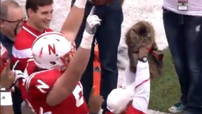 Fluffy Housecat Leads College Football Team Onto the Field