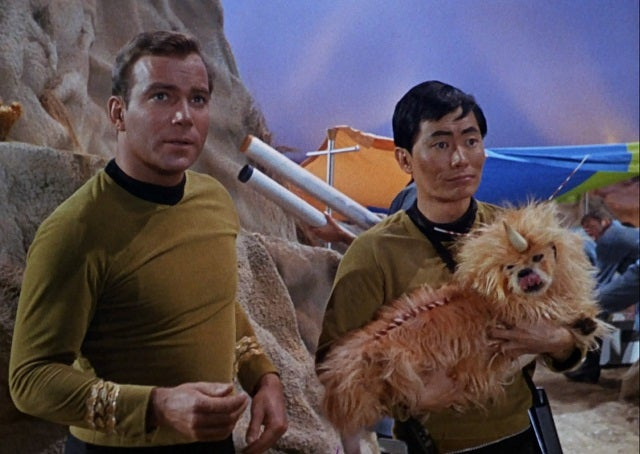 Nocturnal Transmissions: What Fictional Animal Do You Want as a Pet?