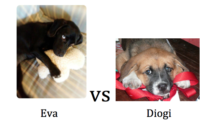 Adorabracket: Elite Eight [CLOSED]