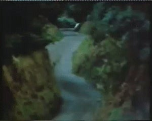 The Unbelievable Roads Of The 1984 Manx Rally