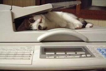 Best Fax Service?