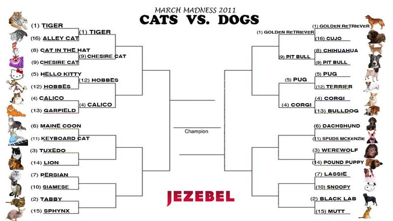 Cats vs. Dogs: The Madness Marches On