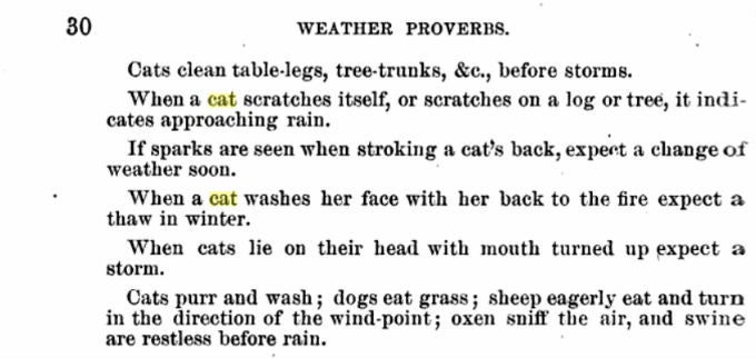Cats Can Predict the Weather, Says Really Old Book