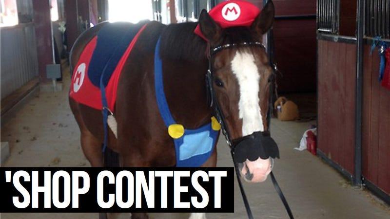 Kotaku 'Shop Contest: Mario Horse