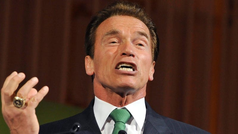 Judge Calls Schwarzenegger's Decision Making 'Repugnant' But Finds Him Innocent of Charges