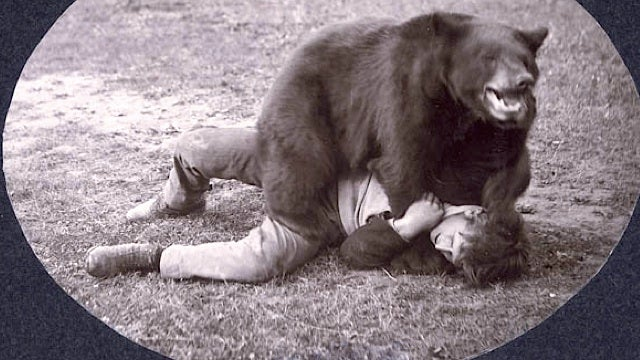 This is history's greatest photo of a bear beating up a man