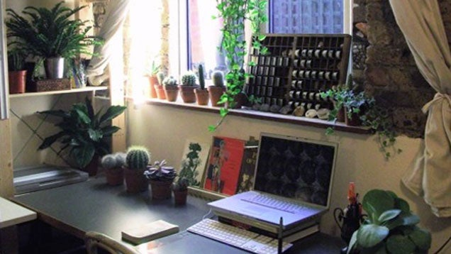 The Green Thumb Workspace