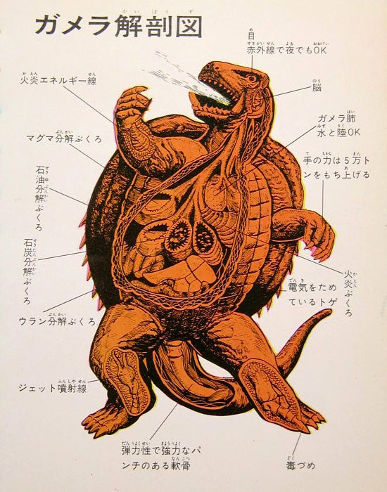 Kaiju anatomical charts reveal organs that allow monsters to shoot ninja stars out of their eyes