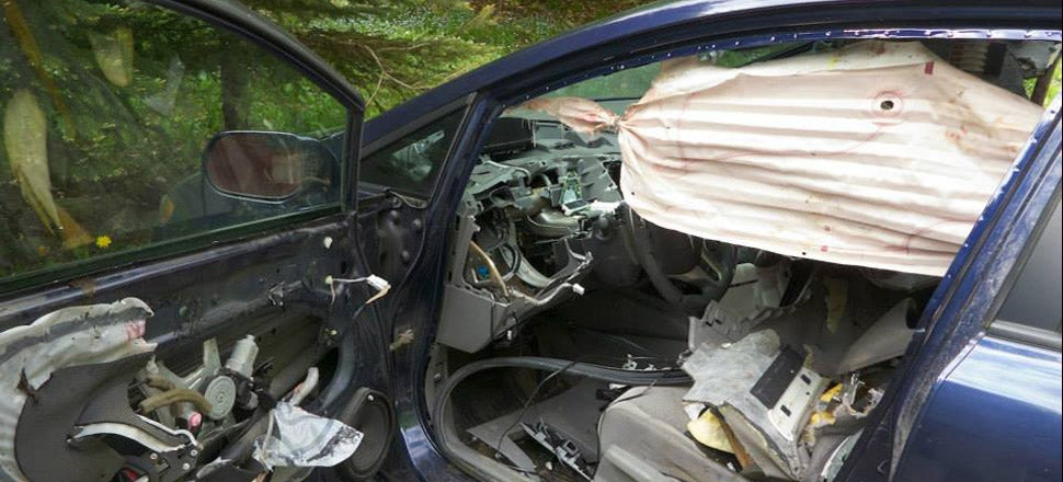 Note To Self: Don't Let Bear In Car