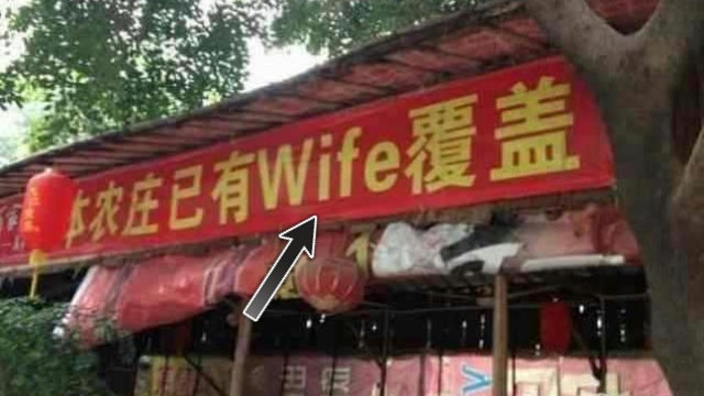 """Chinese Restaurant Offers """"Wife"""" Instead of """"Wifi"""""""