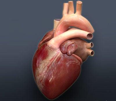 Nanoparticles Causing Heart Attacks, Kidney Stones?