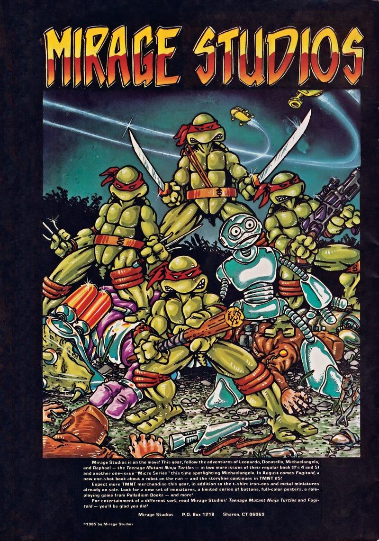 The Strange Real-Life Origins Of The Teenage Mutant Ninja Turtles