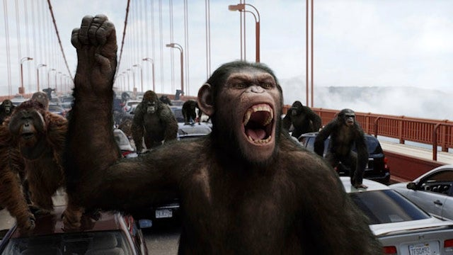 Apes Come Out of Nowhere to Conquer the World