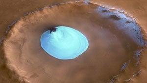 Martian Safari!