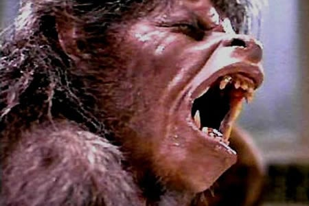 Are You Ready For American Werewolves Across The World?