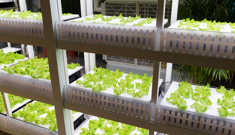 Japanese Company to Build the World's First Autonomous Farm