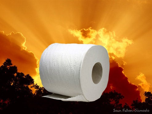 """Toilet Paper Researchers"" Create 3-Ply Tissue"