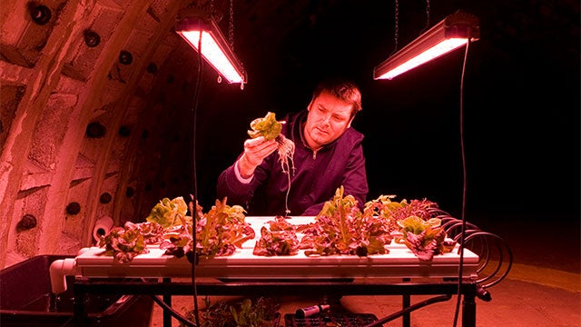 Underground Farm Is Ready For Apocalyptic Salads