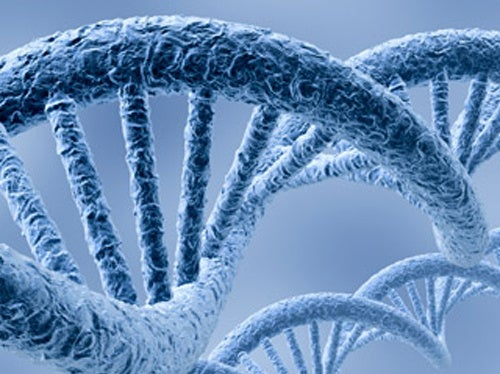 Solid-State Systems Could Sequence a Genome For $100