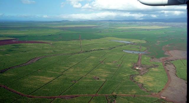 Terraforming Maui: The Hawaiian Sugar Industry's Technological Revolution