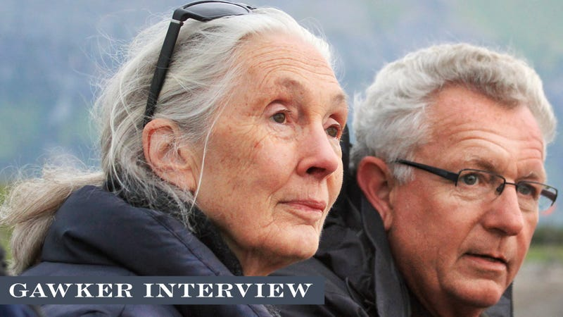 "Jane Goodall Answers Our ""Silly"" Questions"