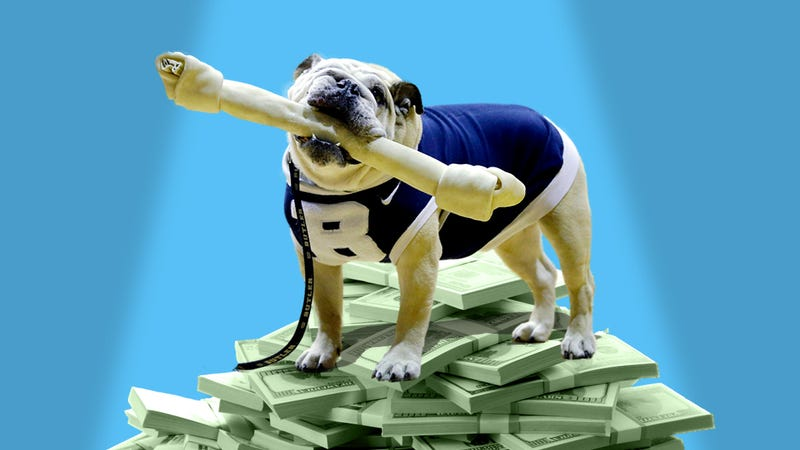 Study: Live Animal Mascots Are Worth Millions To College Football