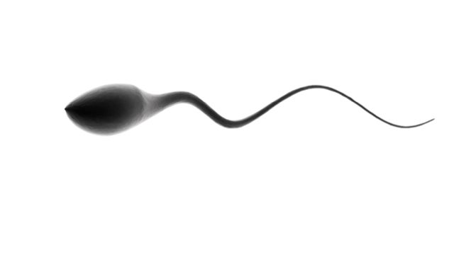 What's so bad about Spanish sperm?