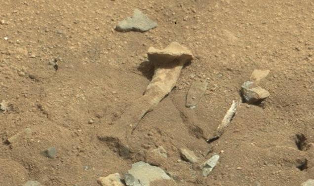 """Alien Thigh Bone"" Found on Mars Is Just a Rock"