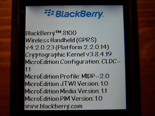 BlackBerry 8100 Poses For Pictures, Looking Skinny and Hot