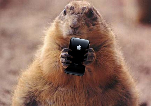Punxsutawney Phil Is Going To Text His Prediction This Year