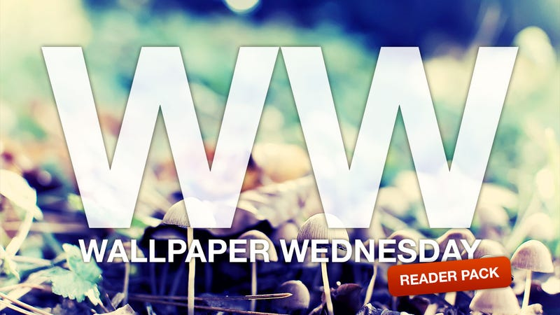 Swap Desktops with Each Other with Our Reader Wallpaper Pack 9.0