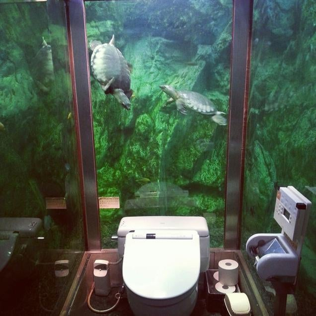 The most amazing places to pee and poop in japan - Deco toilette originale ...