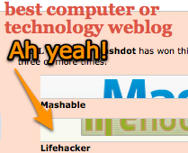Lifehacker Secures Best Computer or Technology Bloggie