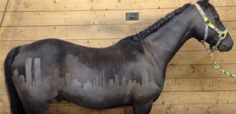 Commemorating 9/11 on a Horse's Butt